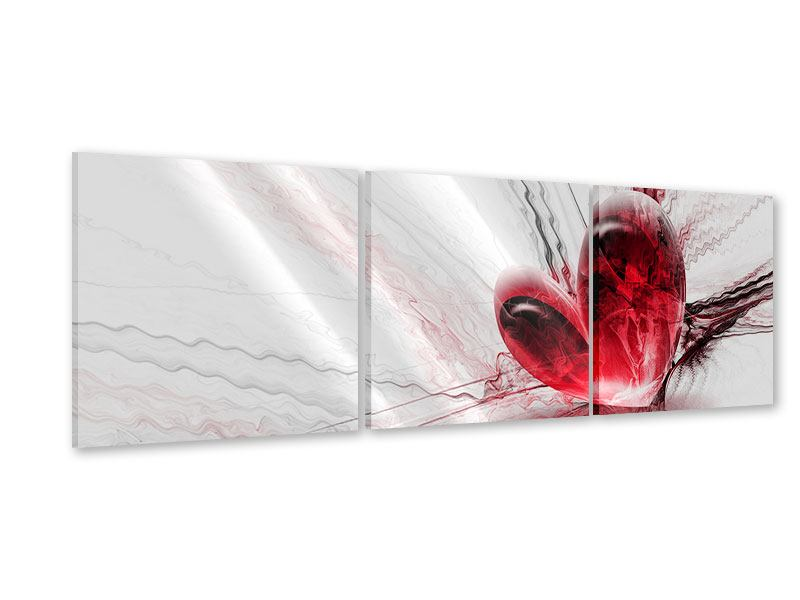 Panorama Acrylglasbild 3-teilig Herzspiegelung