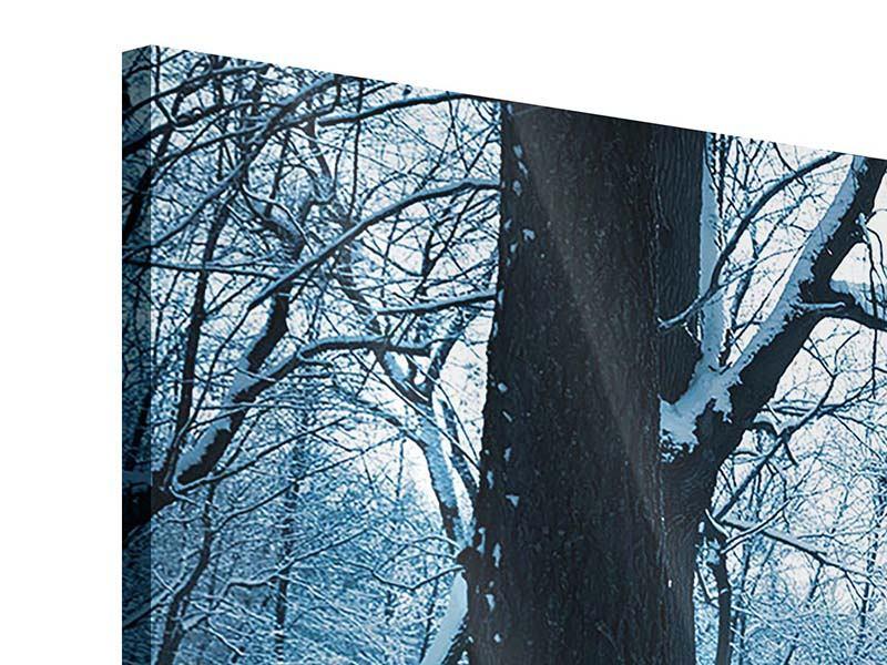 Panorama Acrylglasbild 3-teilig Der Wald ohne Spuren im Schnee