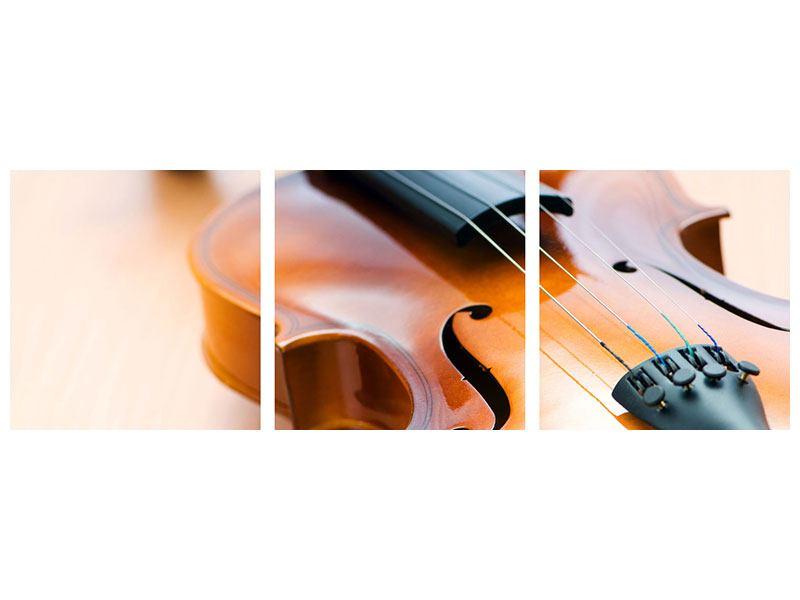 Panorama Acrylglasbild 3-teilig Geige