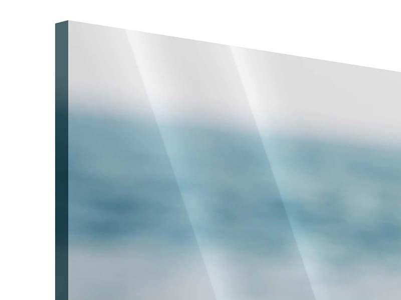 Panorama Acrylglasbild 3-teilig Die Muschel