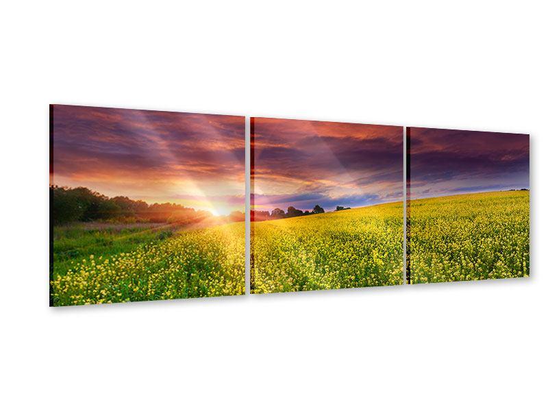 Panorama Acrylglasbild 3-teilig Abenddämmerung