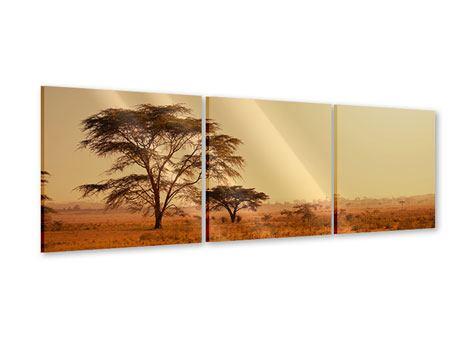 Panorama Acrylglasbild 3-teilig Weideland in Kenia