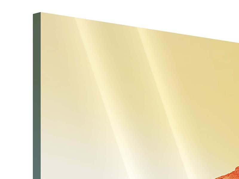 Panorama Acrylglasbild 3-teilig Wasserspiegelung