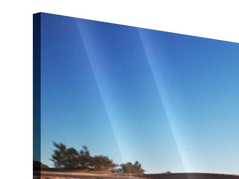 Panorama Acrylglasbild 3-teilig Dürre