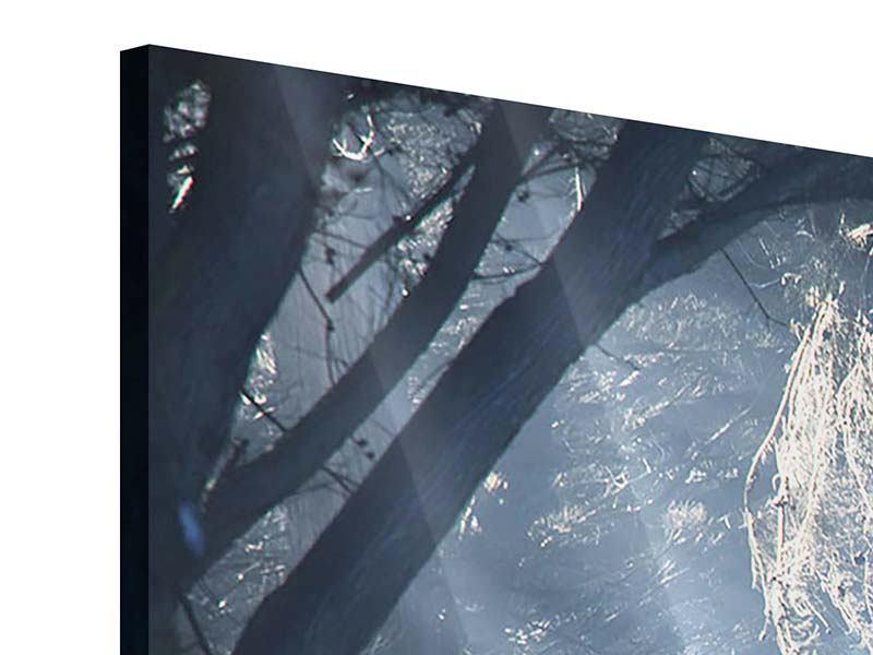 Panorama Acrylglasbild 3-teilig Lichtdurchflutete Baumallee