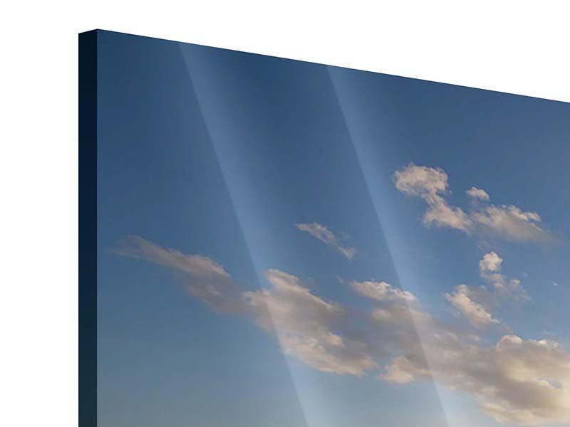 Panorama Acrylglasbild 3-teilig Die Wellen des Meeres