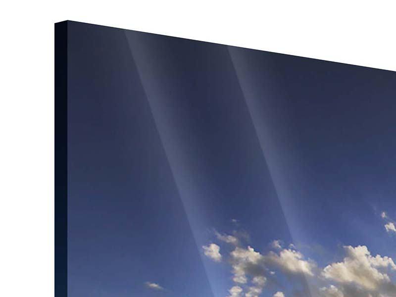 Panorama Acrylglasbild 3-teilig Das Meer im Sonnenaufgang