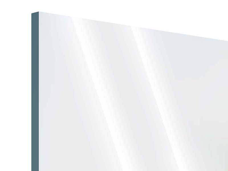 Panorama Acrylglasbild 3-teilig Die Hummel und die Blüte