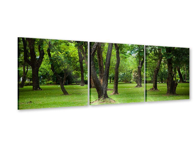 Panorama Acrylglasbild 3-teilig Kirschbaum-Garten