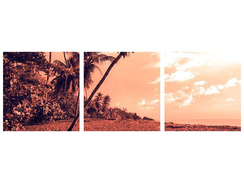 Panorama Acrylglasbild 3-teilig Tropenparadies