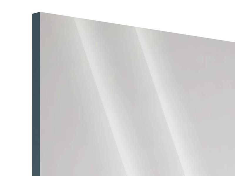 Panorama Acrylglasbild 3-teilig Spa
