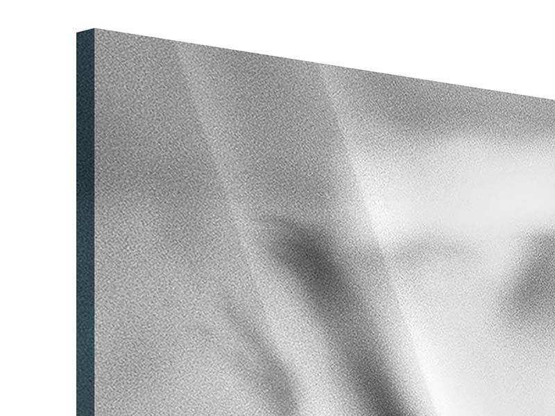 Panorama Acrylglasbild 3-teilig Makro Lilienblatt