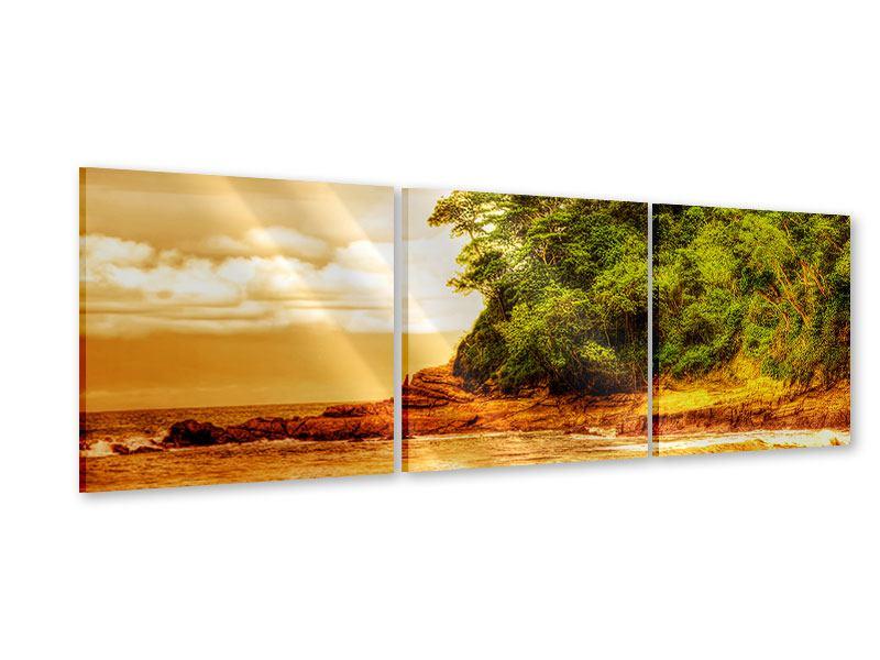 Panorama Acrylglasbild 3-teilig Sonnenuntergang am Ende des Waldes