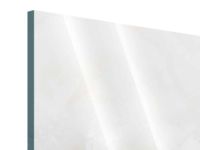 Panorama Acrylglasbild 3-teilig Weisse Rosen im Morgentau