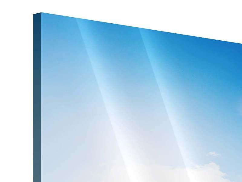 Panorama Acrylglasbild 3-teilig Spuren im Sand