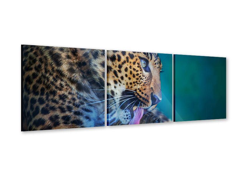Panorama Acrylglasbild 3-teilig Leopard XL
