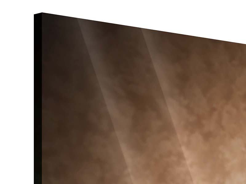 Panorama Acrylglasbild 3-teilig Das Volle Korn
