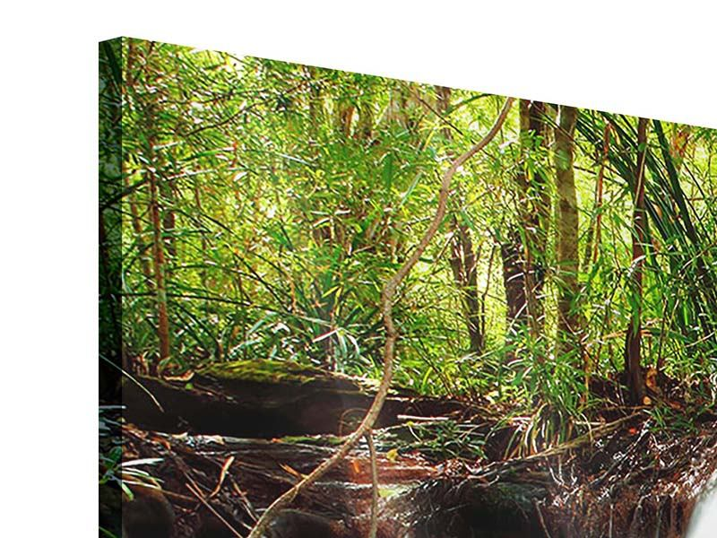 Panorama Acrylglasbild 3-teilig Der Fluss am Wasserfall