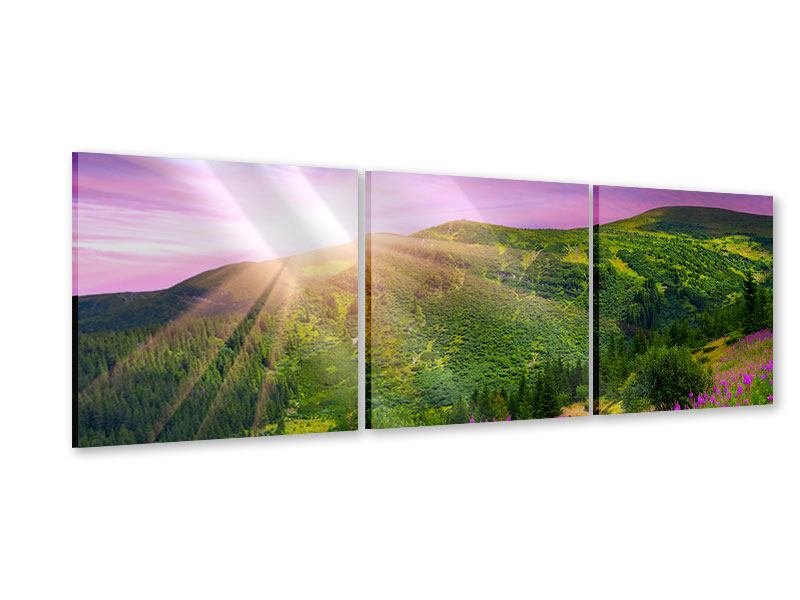 Panorama Acrylglasbild 3-teilig Eine Sommerlandschaft bei Sonnenaufgang