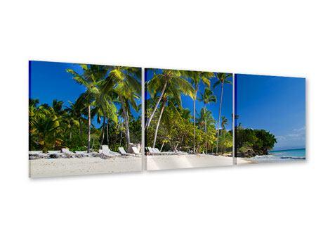 Panorama Acrylglasbild 3-teilig Aloha