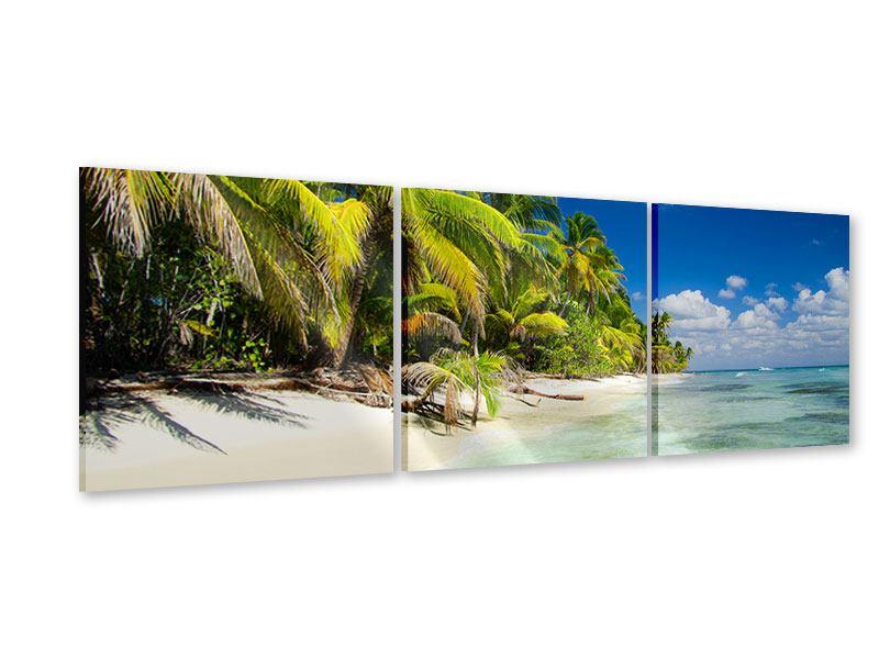 Panorama Acrylglasbild 3-teilig Die einsame Insel