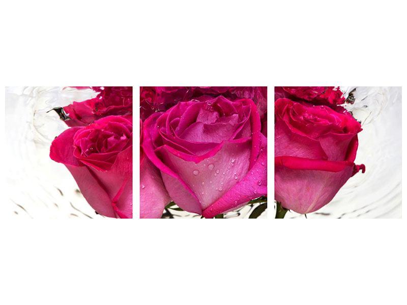Panorama Acrylglasbild 3-teilig Die Rosenspiegelung