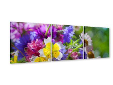 Panorama Acrylglasbild 3-teilig XXL Gartenblumen