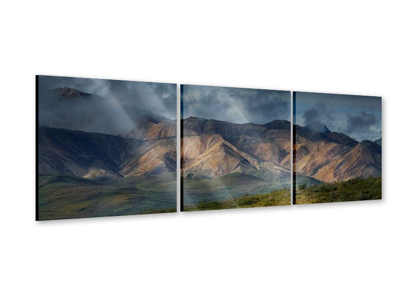 Panorama Acrylglasbild 3-teilig Silberstreifen
