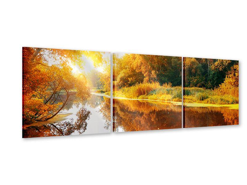 Panorama Acrylglasbild 3-teilig Waldspiegelung im Wasser