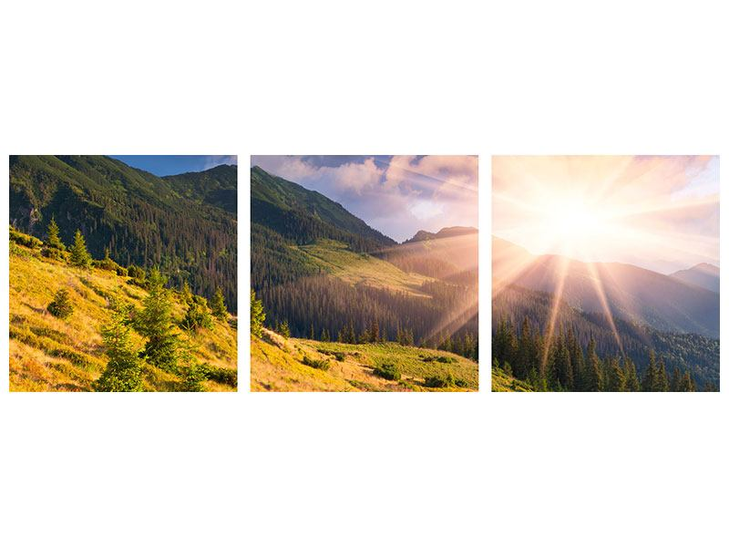 Panorama Acrylglasbild 3-teilig Herbstanfang