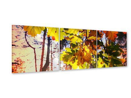 Panorama Acrylglasbild 3-teilig Herbst