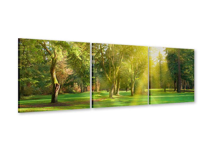 Panorama Acrylglasbild 3-teilig Im Park