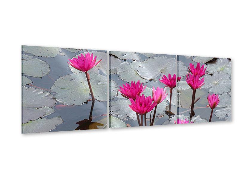 Panorama Acrylglasbild 3-teilig Sprung in den Seerosenteich