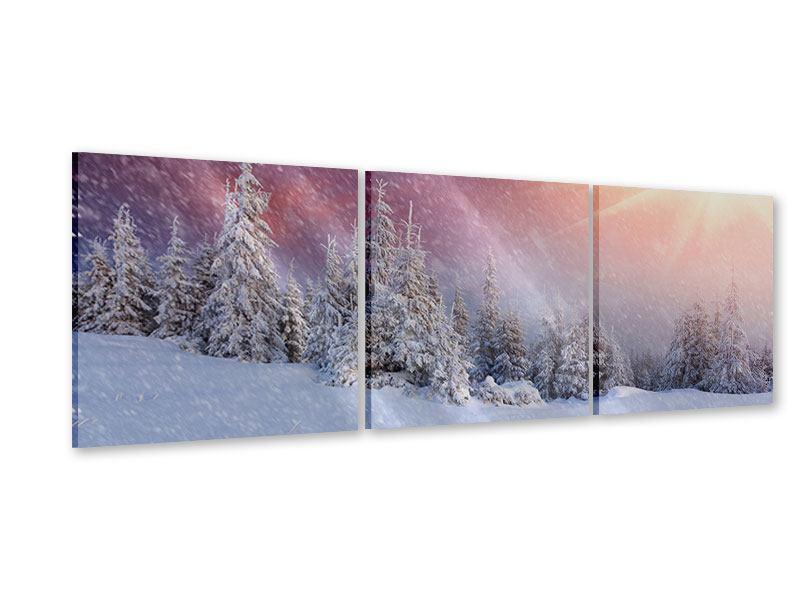 Panorama Acrylglasbild 3-teilig Mystischer Schneesturm