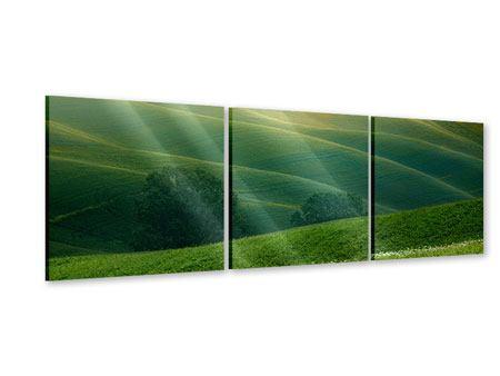Panorama Acrylglasbild 3-teilig Toskana
