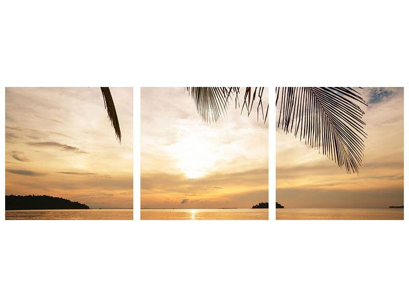Panorama Acrylglasbild 3-teilig Strandpalme