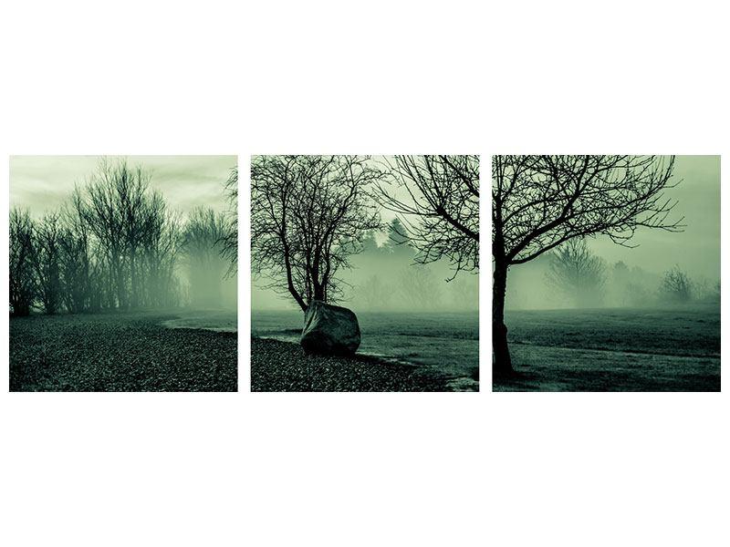 Panorama Acrylglasbild 3-teilig Der Auwald im Nebel