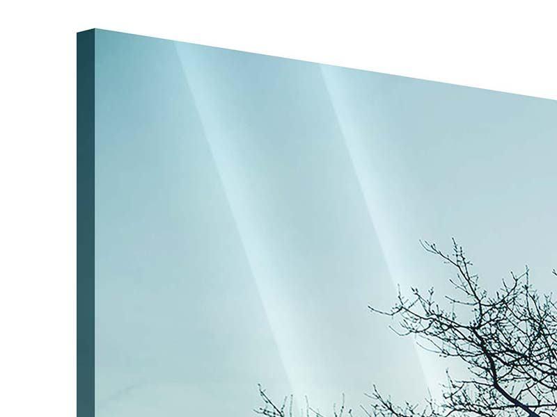 Panorama Acrylglasbild 3-teilig Der Zauberbaum