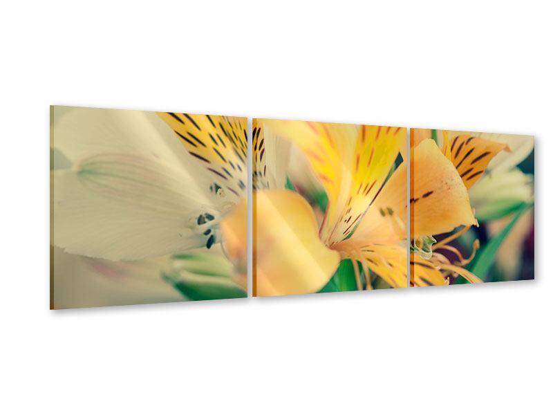 Panorama Acrylglasbild 3-teilig Tigerlilien