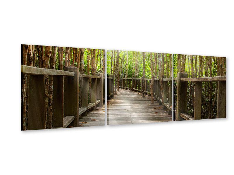 Panorama Acrylglasbild 3-teilig Hölzerne Brücke