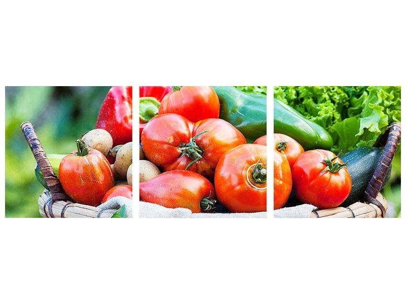 Panorama Acrylglasbild 3-teilig Gemüsekorb