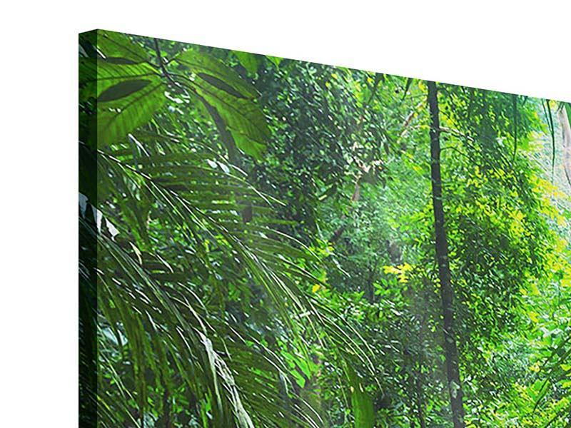 Panorama Acrylglasbild 3-teilig Wasserfall Agua Azul