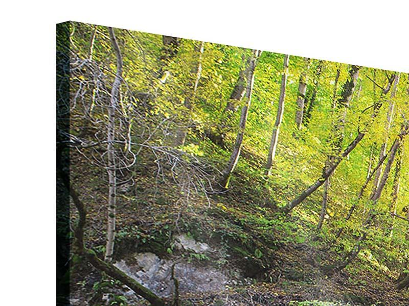 Panorama Acrylglasbild 3-teilig Fliessender Wasserfall