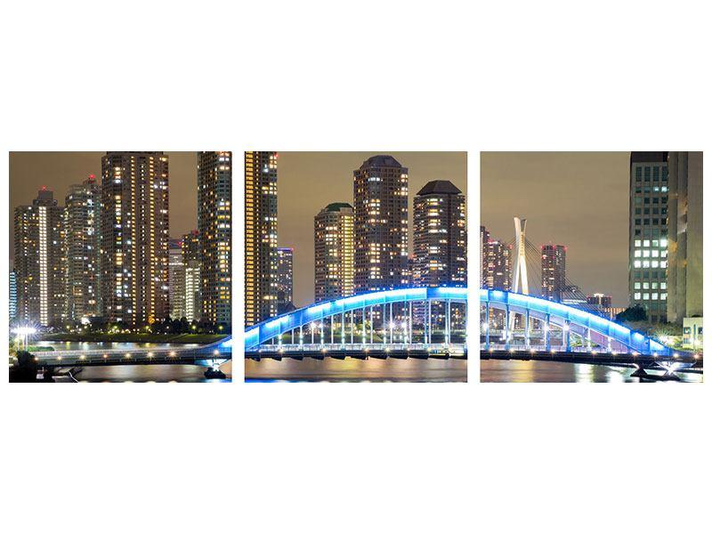 Panorama Acrylglasbild 3-teilig Skyline Tokio in der Nacht