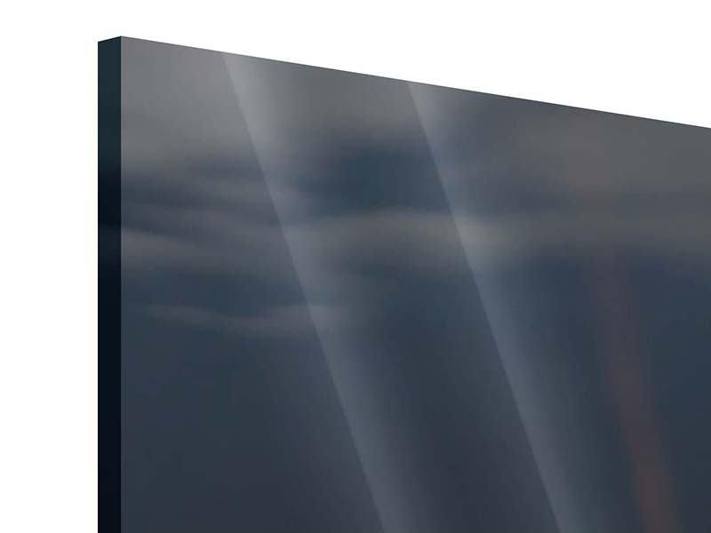 Panorama Acrylglasbild 3-teilig Seerose in der Abenddämmerung