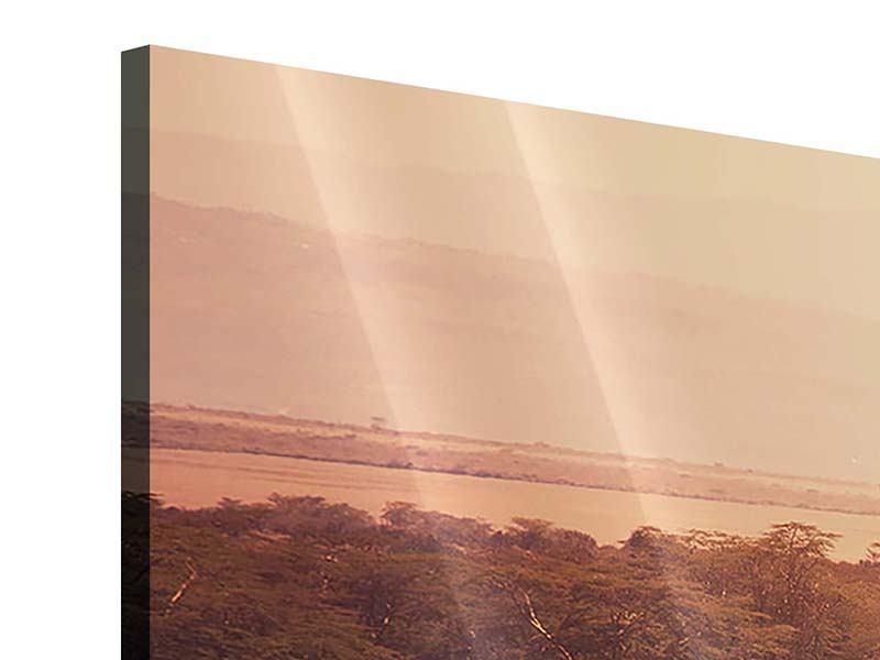 Panorama Acrylglasbild 3-teilig Malerisches Afrika