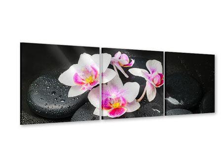 Panorama Acrylglasbild 3-teilig Feng-Shui-Orchidee Zen