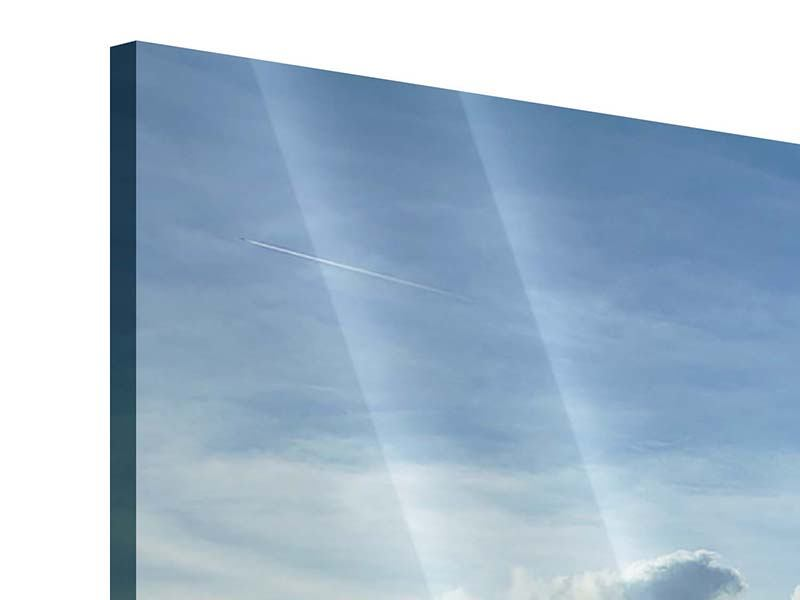 Panorama Acrylglasbild 3-teilig Frühlingsbaum