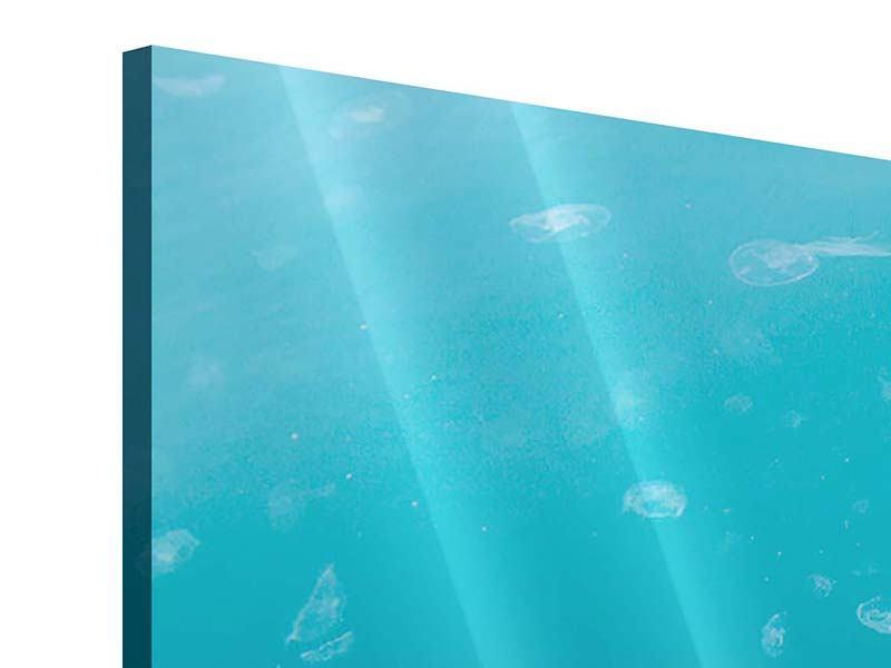 Acrylglasbild 3-teilig modern Viele Quallen