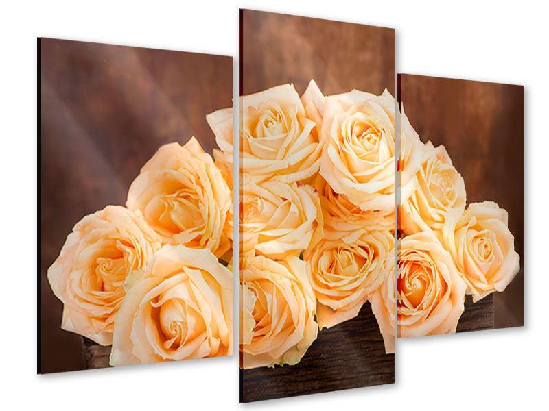 Acrylglasbild 3-teilig modern Die Rosenzeit